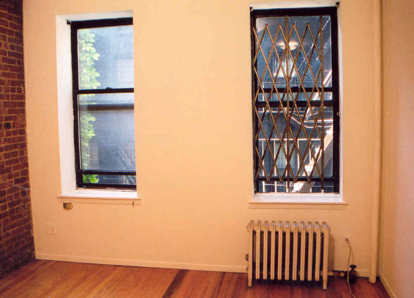 516 East 11th street: Apartment Windows