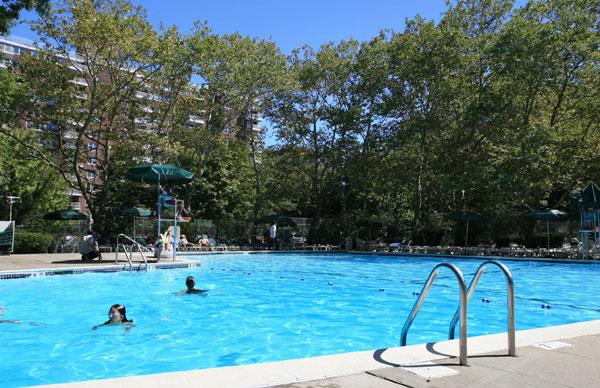 Briar Hill: Pool