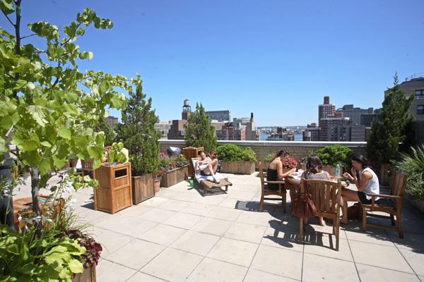 Habitat: Roof Deck (2)