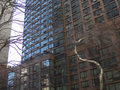 300 East 39th: Wall of Windows