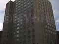 The Habitat: Street View