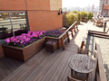 The Sagamore: roof deck (2)